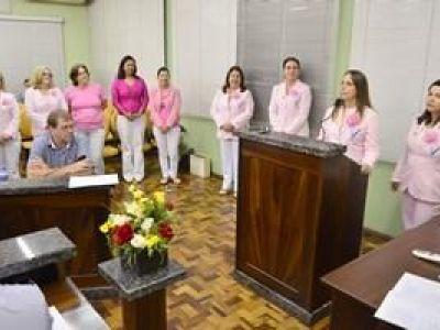 Rede Feminina de Combate ao Câncer apresentou trabalho desenvolvido em Ibirama
